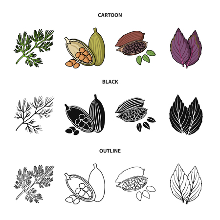 Dill, cocoa beans, basil.Herbs and spices set collection icons in cartoon,black,outline style vector symbol stock illustration web. Фото со стока - 103630074
