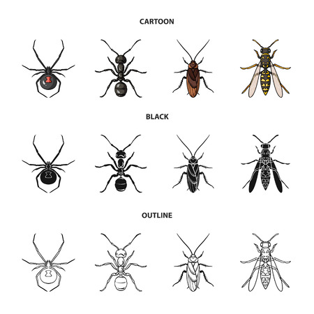 Spider, ant, wasp, bee .Insects set collection icons in cartoon,black,outline style vector symbol stock illustration web.