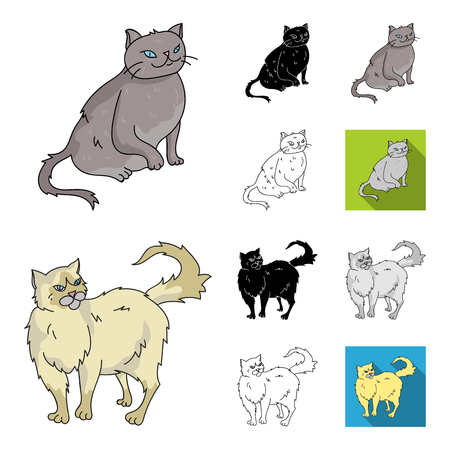 Breeds of cats cartoon,black,flat,monochrome,outline icons in set collection for design. Pet cat vector symbol stock web illustration. Illustration
