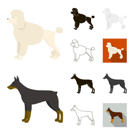 Dog breeds cartoon,black,flat,monochrome,outline icons in set collection for design.Dog pet vector symbol stock web illustration. Vettoriali