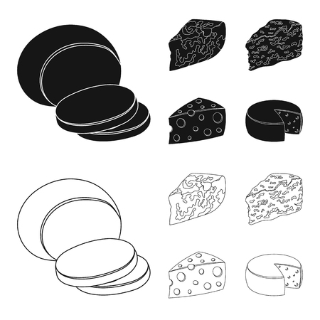 Parmesan, roquefort, maasdam, gauda.Different types of cheese set collection icons in black,outline style vector symbol stock illustration .  イラスト・ベクター素材