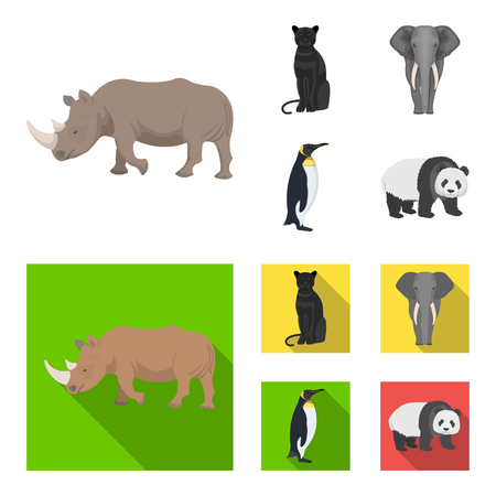 Black rhinoceros, panther wild cat, African animal elephant, imperial penguin. Wild animals set collection icons in cartoon,flat style vector symbol stock illustration .