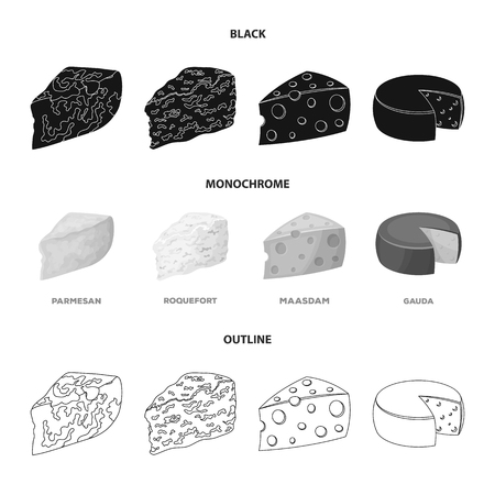 Parmesan, roquefort, maasdam, gauda.Different types of cheese set collection icons in black,monochrome,outline style vector symbol stock illustration .