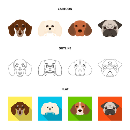 Muzzle of different breeds of dogs.Dog breed of dachshund, lapdog, beagle, pug set collection icons in cartoon,outline,flat style vector symbol stock illustration web.