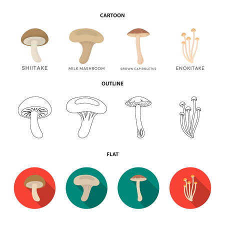 Shiitake, brown cap boletus, enokitake, milk. set collection icons in cartoon,outline,flat style vector symbol stock illustration web.