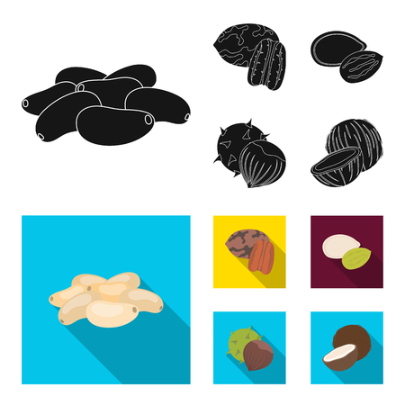 Pecan, pine nut, pumpkin seeds, chestnut.Different kinds of nuts set collection icons in black, flat style vector symbol stock illustration web.