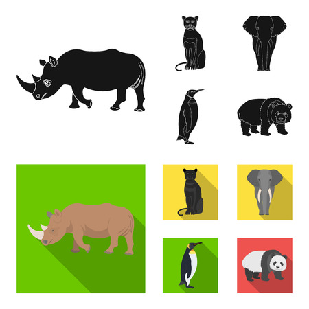Black rhinoceros, panther wild cat, African animal elephant, imperial penguin. Wild animals set collection icons in black,flat style vector symbol stock illustration web. Illustration