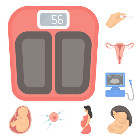 Woman and pregnancy cartoon icons in set collection for design. Gynecology and equipment vector symbol stock  illustration. Illustration