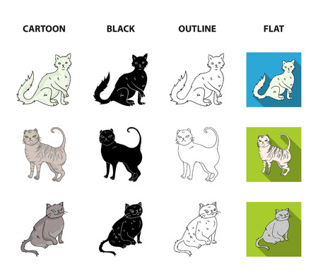 Turkish Angora, British longhair and other species. Cat breeds set collection icons in cartoon,black,outline,flat style vector symbol stock illustration . Stockfoto - 103984810