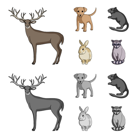 Puppy, rodent, rabbit and other animal species.Animals set collection icons in cartoon,monochrome style vector symbol stock illustration web. Illustration