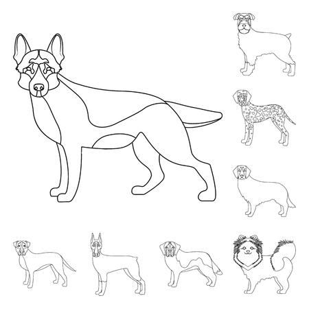 Dog breeds outline icons in set collection for design.Dog pet vector symbol stock  illustration.