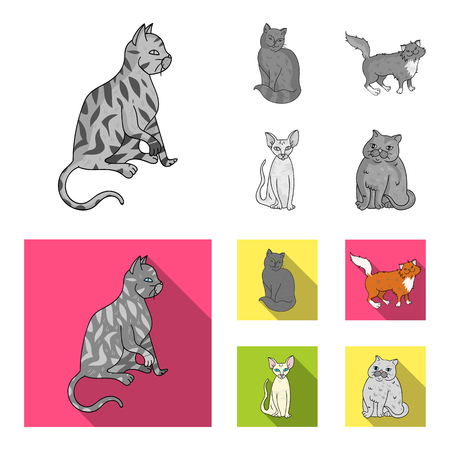 Sphinx, nibelung, norwegian forest cat and other species. Cat breeds set collection icons in monochrome,flat style vector symbol stock illustration .