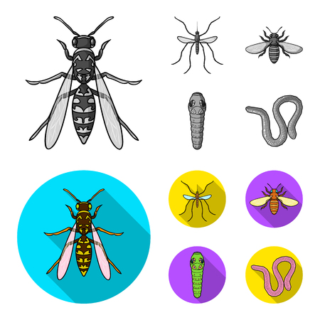 Worm, centipede, wasp, bee, hornet .Insects set collection icons in monochrome,flat style vector symbol stock illustration .