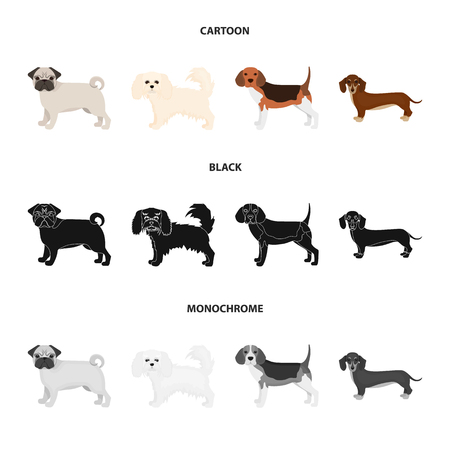 Dog breeds cartoon,black,monochrome icons in set collection for design.Dog pet vector symbol stock web illustration.