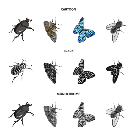 Arthropods insect, moth, butterfly, fly. Insects set collection icons in cartoon,black,monochrome style vector symbol stock isometric illustration web.