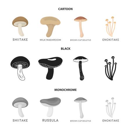 Shiitake, brown cap boletus, enokitake, milk. set collection icons in cartoon,black,monochrome style vector symbol stock illustration web.
