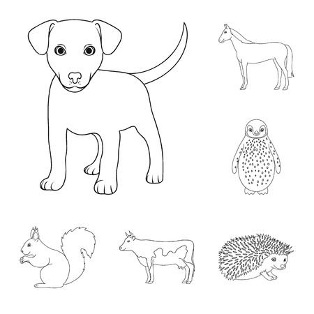 Realistische dieren cartoon pictogrammen in set collectie voor design. Wilde en gedomesticeerde dieren vector symbool voorraad web illustratie.