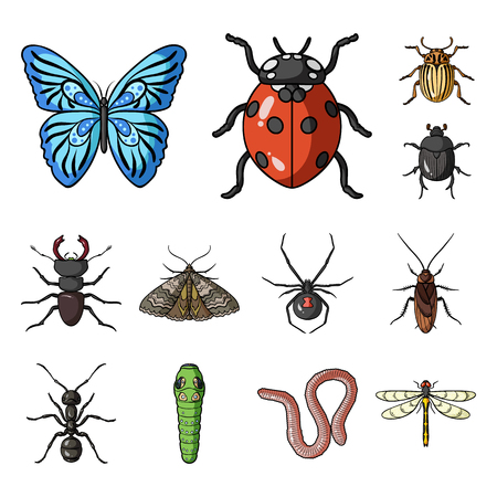 Different kinds of insects cartoon icons in set collection for design. Insect arthropod vector symbol stock web illustration. 向量圖像