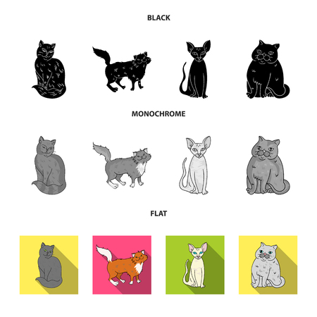 Sphinx, nibelung,norwegian forest cat and other species. Cat breeds set collection icons in black, flat, monochrome style vector symbol stock illustration web.