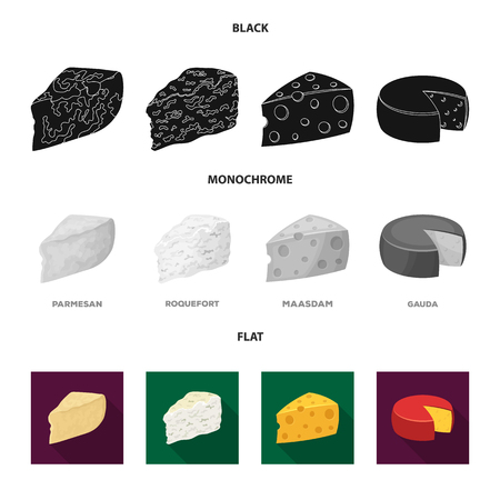Parmesan, roquefort, maasdam, gauda.Different types of cheese set collection icons in black, flat, monochrome style vector symbol stock illustration .