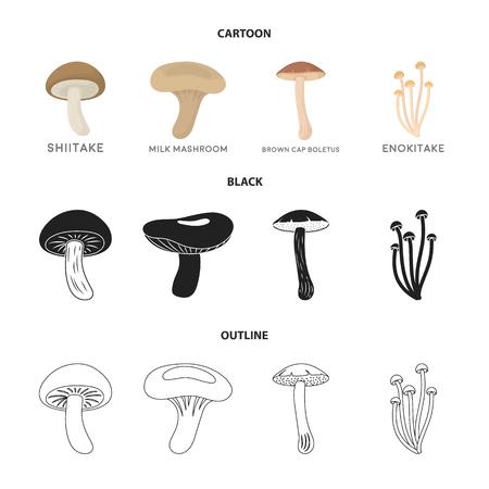 Shiitake, brown cap boletus, enokitake, milk. set collection icons in cartoon,black,outline style vector symbol stock illustration .