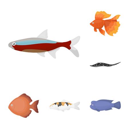 Different types of fish cartoon icons in set collection for design. Marine and aquarium fish symbol stock web illustration.