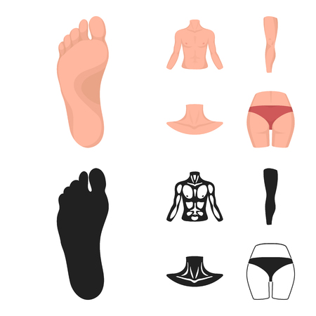 Torso, leg, neck and buttocks. Body parts set collection icons in cartoon,black style vector symbol stock illustration web.
