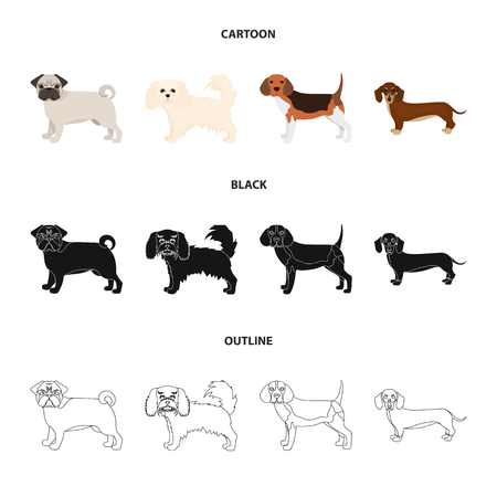 Dog breeds cartoon,black,outline icons in set collection for design.Dog pet vector symbol stock web illustration.