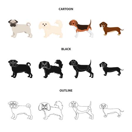 Dog breeds cartoon,black,outline icons in set collection for design.Dog pet vector symbol stock web illustration.