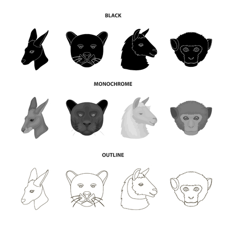 Kangaroos, llama, monkey, panther, Realistic animals set collection icons in black,monochrome,outline style vector symbol stock illustration web. Vectores