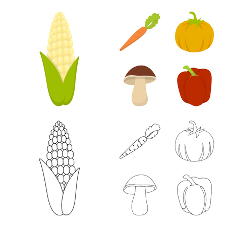 Corn corn, vitamin carrots with tops, pumpkin, forest mushroom. Vegetables set collection icons in cartoon,outline style vector symbol stock illustration .