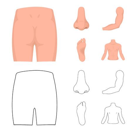 Billen, neus, arm, voet. Een deel van het lichaam collectie iconen in cartoon stijl vector symbool stock illustratie web instellen. Vector Illustratie