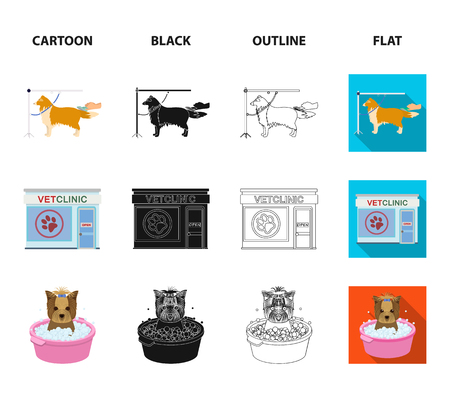 Walking with a dog in the park, combing a dog, a veterinarian office, bathing a pet. Vet clinic and pet care set collection icons in cartoon,black,outline,flat style vector symbol stock illustration web.