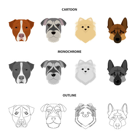 Muzzle of different breeds of dogs.Dog breed Stafford, Spitz, Risenschnauzer, German Shepherd set collection icons in cartoon,outline,monochrome style vector symbol stock illustration web. Vettoriali