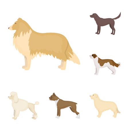 Dog breeds cartoon icons in set collection for design.Dog pet vector symbol stock  illustration.  イラスト・ベクター素材
