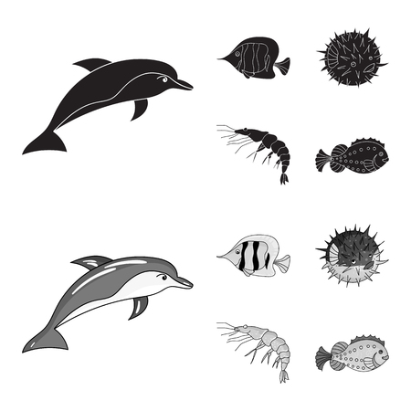 Shrimp, fish, hedgehog and other species.Sea animals set collection icons in black,monochrome style vector symbol stock illustration . Ilustração