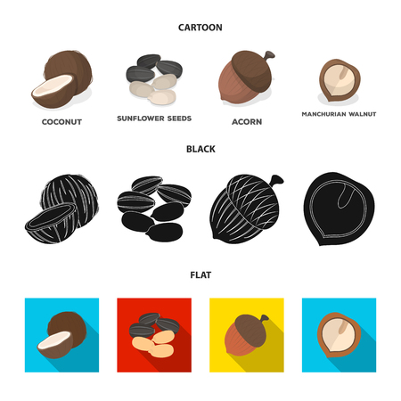 Coconut, acorn, sunflower seeds, manchueian walnut.Different kinds of nuts set collection icons in cartoon,black,flat style vector symbol stock illustration web.