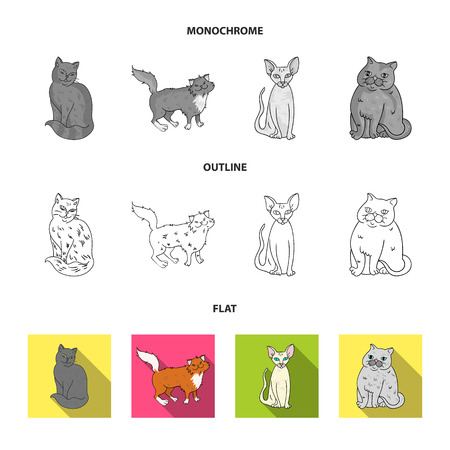 Sphinx, nibelung,norwegian forest cat and other species. Cat breeds set collection icons in flat,outline,monochrome style vector symbol stock illustration web.