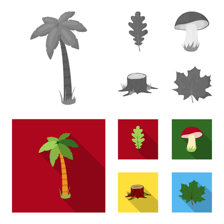 Oak leaf, mushroom, stump, maple leaf.Forest set collection icons in monochrome,flat style vector symbol stock illustration . Иллюстрация