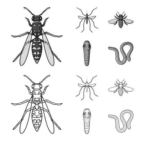 Worm, centipede, wasp, bee, hornet .Insects set collection icons in outline,monochrome style vector symbol stock illustration web.
