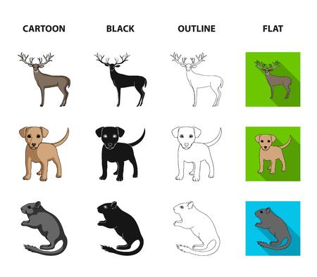 Puppy, rodent, rabbit and other animal species.Animals set collection icons in cartoon,black,outline,flat style bitmap symbol stock illustration web.