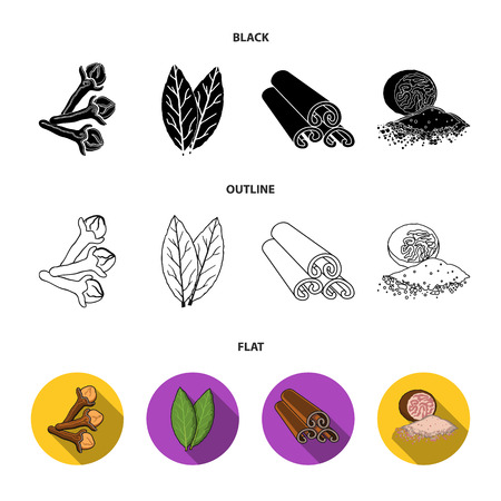Clove, bay leaf, nutmeg, cinnamon.Herbs and spices set collection icons in cartoon style vector symbol stock illustration web. Vettoriali