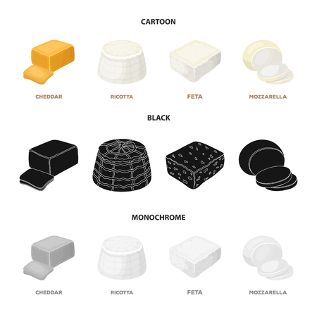 Mozzarella, feta, cheddar, ricotta.Different types of cheese set collection icons in cartoon,black,monochrome style vector symbol stock illustration web.