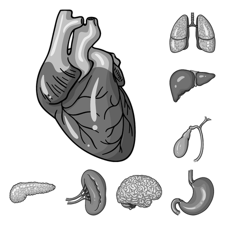 Human organs monochrome icons in set collection for design. Anatomy and internal organs vector symbol stock web illustration.