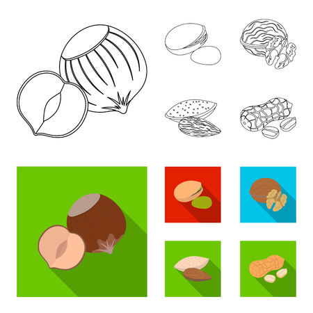 Hazelnut, pistachios, walnut, almonds.Different kinds of nuts set collection icons in outline,flat style vector symbol stock illustration web. Illustration