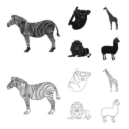 African zebra, animal koala, giraffe, wild predator, lion. Wild animals set collection icons in black,outline style vector symbol stock illustration web.