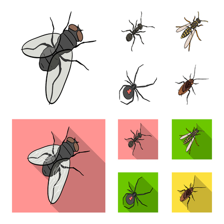 An insect arthropod, an osa, a spider, a cockroach. Insects set collection icons in cartoon,flat style vector symbol stock isometric illustration web.