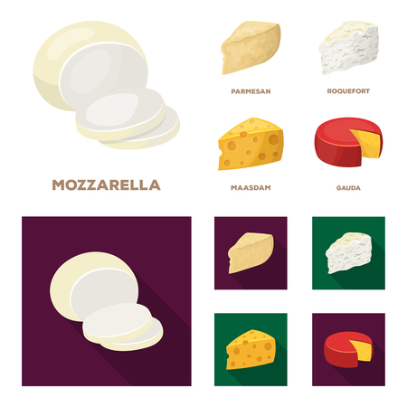 Parmesan, roquefort, maasdam, gauda.Different types of cheese set collection icons in cartoon,flat style vector symbol stock illustration .