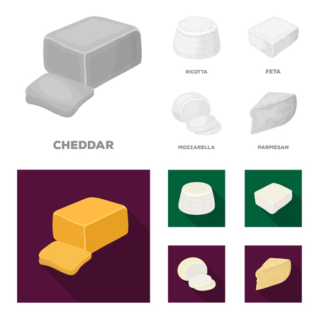 Mozzarella, feta, cheddar, ricotta.Different types of cheese set collection icons in monochrome,flat style bitmap symbol stock illustration web.