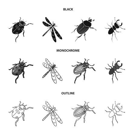 Arthropoden Insekten Marienkäfer, Libelle, Käfer, Colorado Käfer Insekten Set Sammlung Ikonen in schwarz, monochrom, Umriss Stil Vektor Symbol Lager isometrische Illustration Web.